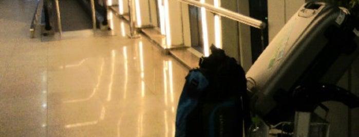 Drop Zone New International Departures Terminal is one of Lugares favoritos de Manon.
