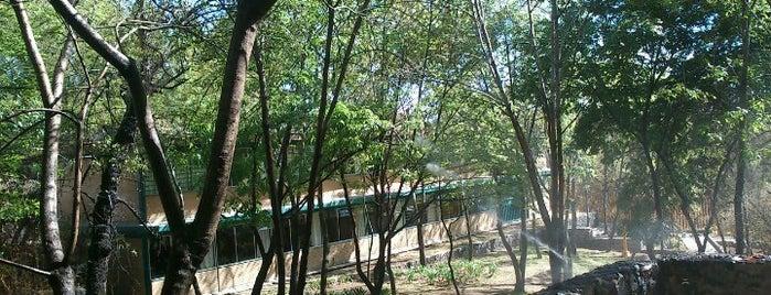 UNAM CCH Sur is one of Trabajo.