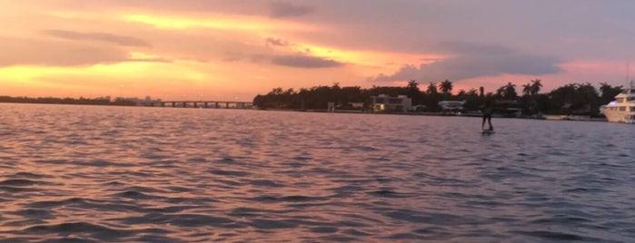 Miami Beach Paddleboard is one of Orte, die Shannon gefallen.