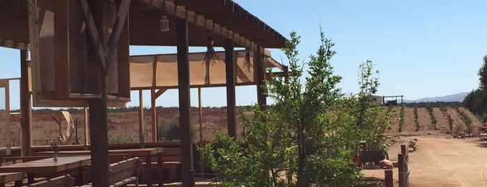 Brasa del Valle is one of Valle de Guadalupe / Ensenada Road Trip.