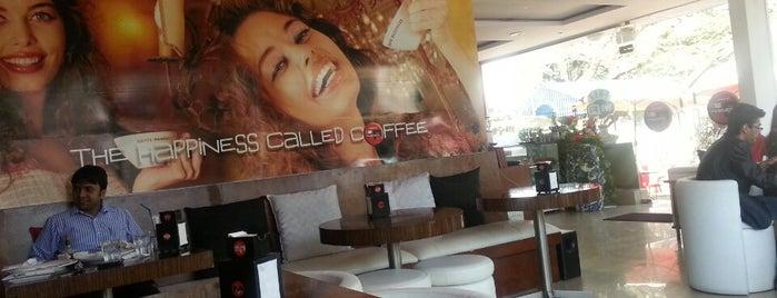 Cafe Pascucci is one of Lugares favoritos de Jobin.