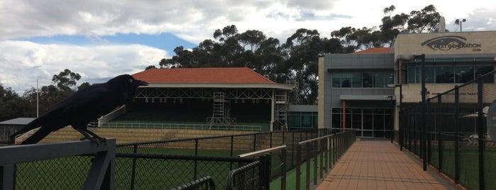 Next Generation Kings Park is one of Internode WiFi Hotspots in Western Australia.