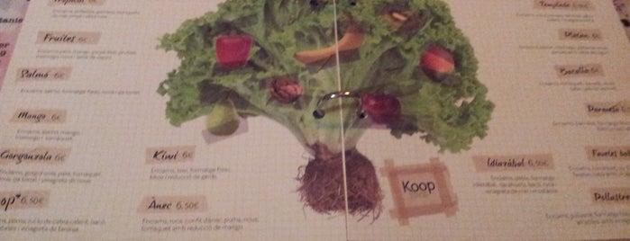 Koop is one of Los placeres de Pepa 1.