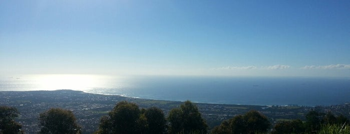 Mt Keira Lookout is one of Locais curtidos por Matt.