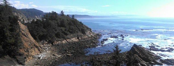 Cape Arago State Park is one of Andy : понравившиеся места.