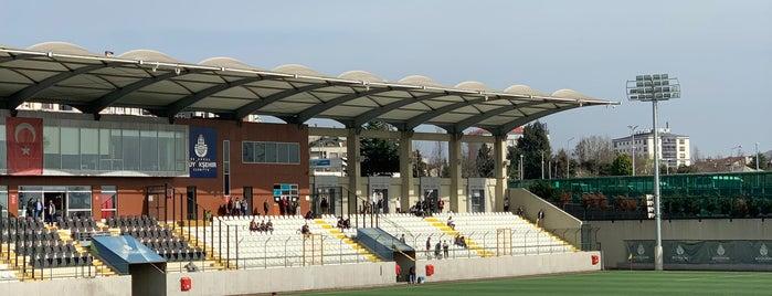 İBB Bayrampaşa Stadı is one of Locais curtidos por Çağrı.