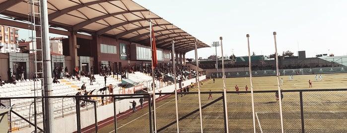İBB Bayrampaşa Stadı is one of Çağrı'nın Beğendiği Mekanlar.