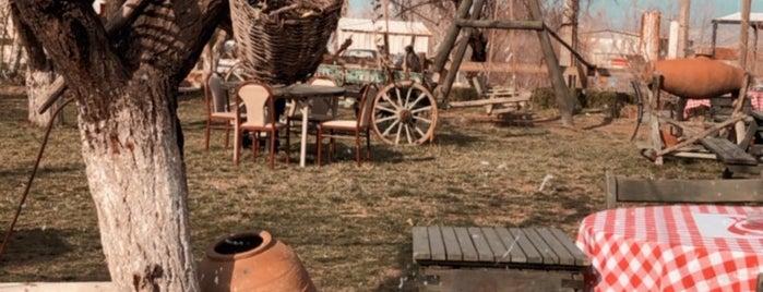 Yeşil Bahçe Mahmut'un yeri is one of Torejeuy.