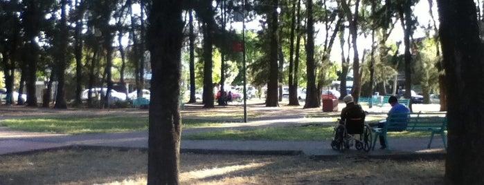 Parque Justo Sierra Y Nelson is one of Orte, die Erika gefallen.