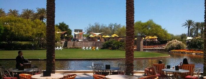 JW Marriott Phoenix Desert Ridge Resort & Spa is one of Katさんの保存済みスポット.