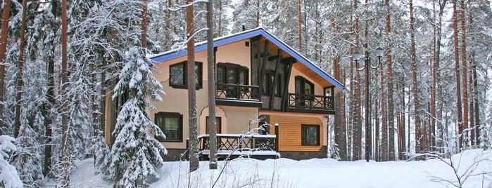 Курорт Лесная Рапсодия is one of Развлекуха рядом с п.Молодёжное.