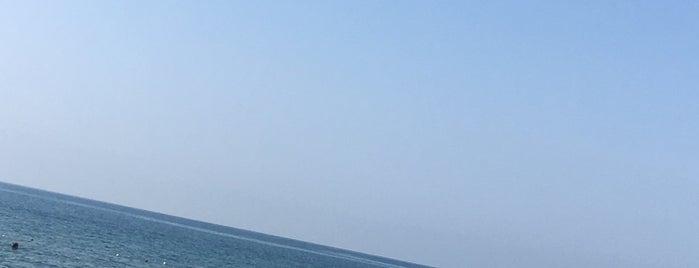 VIP Loca - Dido Beach is one of Lieux qui ont plu à Efe.