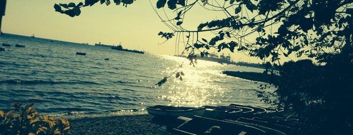 Deniz Çay Bahçesi is one of Posti che sono piaciuti a Zafersyk.