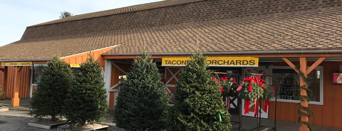 Taconic Orchards is one of adventures outside nyc.
