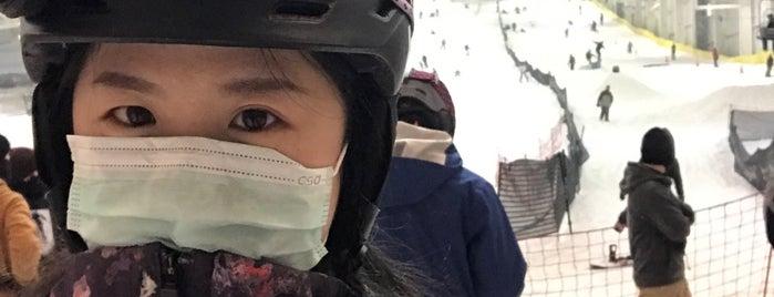 Big Snow is one of lino 님이 좋아한 장소.