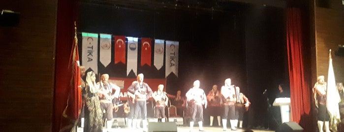 Mehmet Akif Ersoy Kongre Merkezi is one of Locais curtidos por Şebnem.