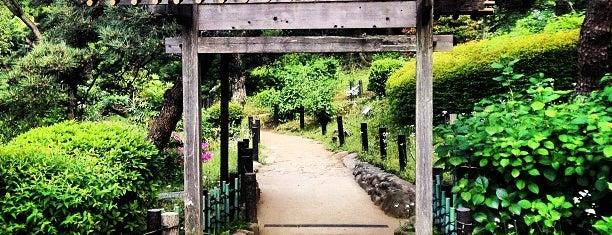 Higo-Hosokawa Garden is one of Posti che sono piaciuti a Nonono.
