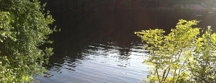 Карьер на жд. ст. Морская is one of Galina: сохраненные места.