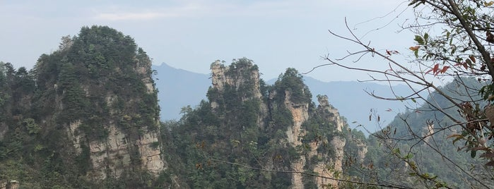 Tianzi Mountain is one of Rochさんの保存済みスポット.