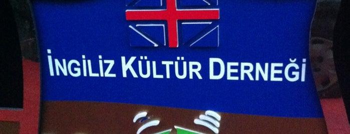 Kids A Loud is one of สถานที่ที่ Özlem ถูกใจ.