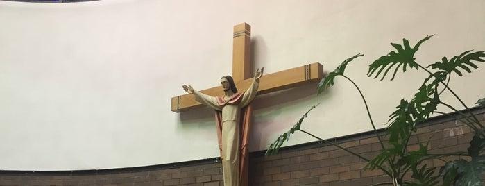 Trinity Lutheran Church is one of Locais curtidos por Joe.