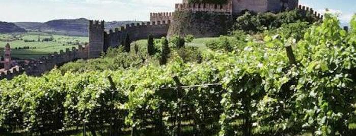 Allegrini is one of Verona.