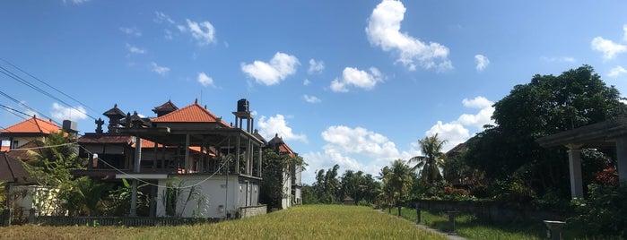 The Moksha Ubud is one of Ubud.