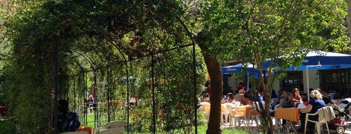Sağlık Çay Bahçesi is one of Mehmet'in Beğendiği Mekanlar.