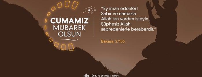 İstanbul Tuzla Organize Sanayi Bölgesi | İTOSB is one of hndn_k 님이 좋아한 장소.