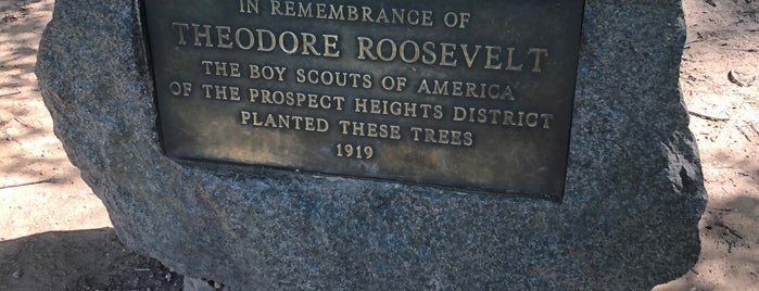 Boy Scout's Tablet is one of Prospect Park.