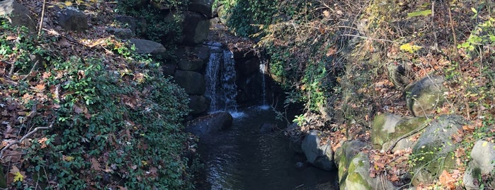 Ambergill Falls is one of Prospect Park.