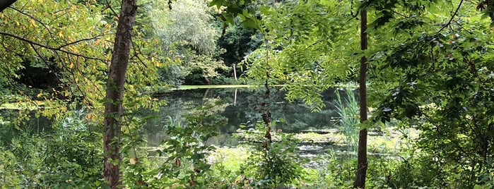 Lower Pool is one of Prospect Park.