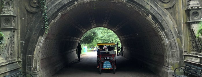Cleft Ridge Arch is one of Prospect Park.