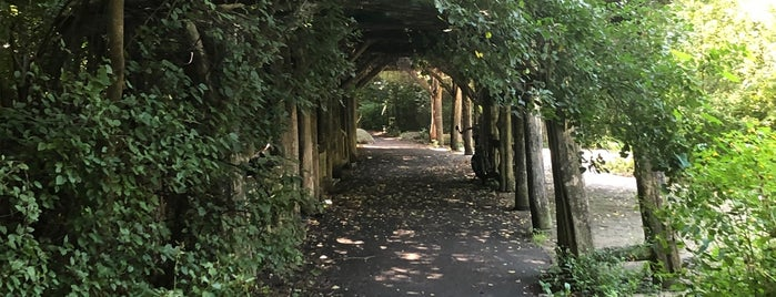 Rustic Arbor is one of Prospect Park.