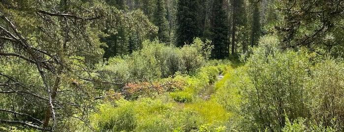 Breckenridge Stables is one of Rockies Road Trip.