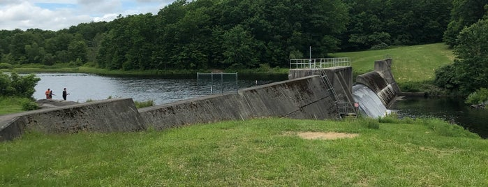 Shohola Marsh Dam is one of Delaware River Adventure Ideas.