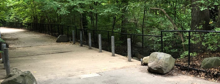 Esdale Bridge is one of Prospect Park.