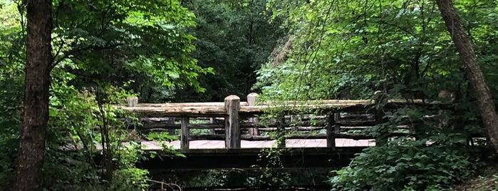 Music Grove Bridge is one of Prospect Park.