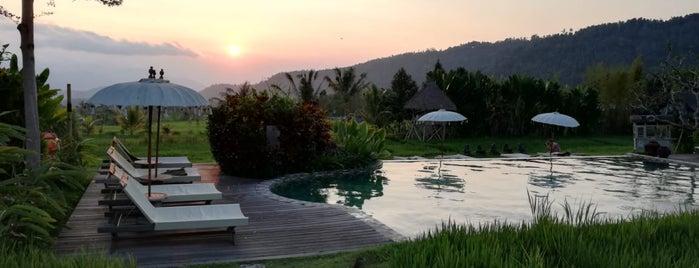 Sanak Retreat Bali is one of Lugares guardados de alejandro.