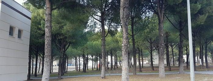 Eüaş Aliağa Kombine Çevrim Santrali işletme Müdürlüğü is one of Tempat yang Disukai Emre.