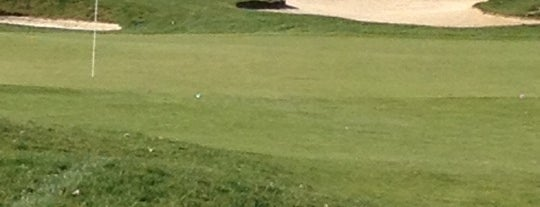Lorain County Golf Courses!