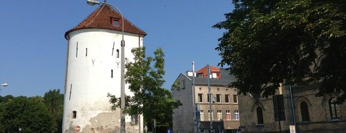 Baszta Biała is one of Gdansk.