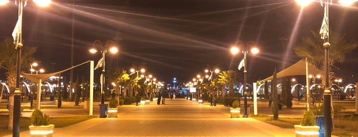 Airport Park is one of Abha.
