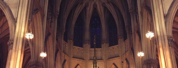 Cathédrale Saint-Patrick is one of New York.