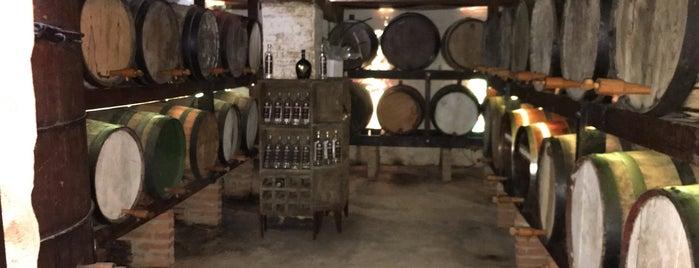 Fazenda Benedetti Turismo Rural (Adega) is one of Adelino'nun Beğendiği Mekanlar.