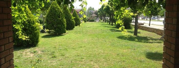 Sakarya Parkı is one of สถานที่ที่ Selman ถูกใจ.