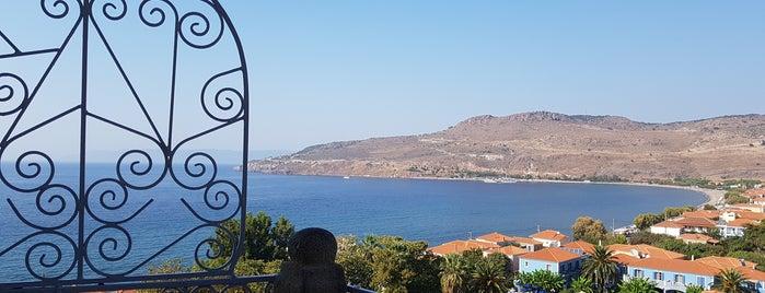 Παναγία Γλυκοφιλούσα is one of midilli adası.