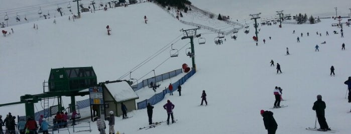 Pine Knob Ski & Snowboard Resort is one of Armando: сохраненные места.