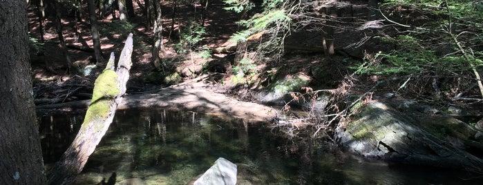Shelving Rock Mountain is one of สถานที่ที่บันทึกไว้ของ Nicholas.