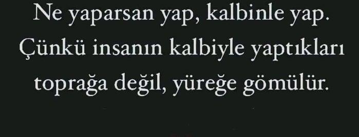 Allı Börek Etiler is one of KARAKARTAL'ın Beğendiği Mekanlar.